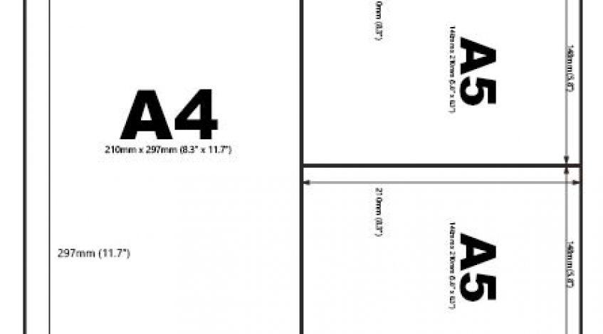Nói đến giấy kích thước A4 chúng ta nghĩ ngay đến những tập giấy in, những quyển vở khổ A4. Những cái đó quá quen thuộc với cuộc sống hàng ngày của chúng ta. Nhưng có bao giờ bạn thử đi sâu vào tìm hiểu xem tại sao nó lại được gọi là giấy A4. […]